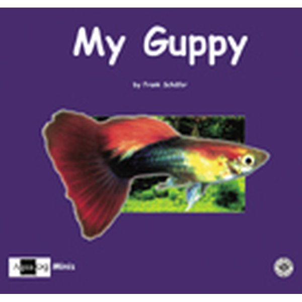 my guppy_1