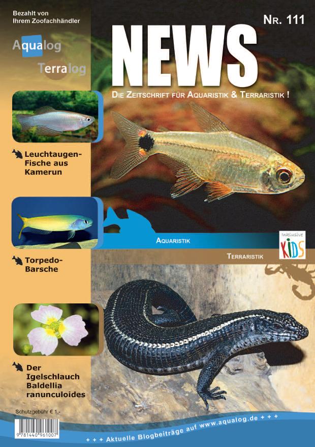 Aqualog news 111