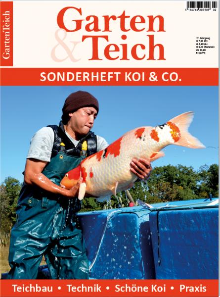 Garten teich sonderheft koi co 2016 for Goldfischteich pflege