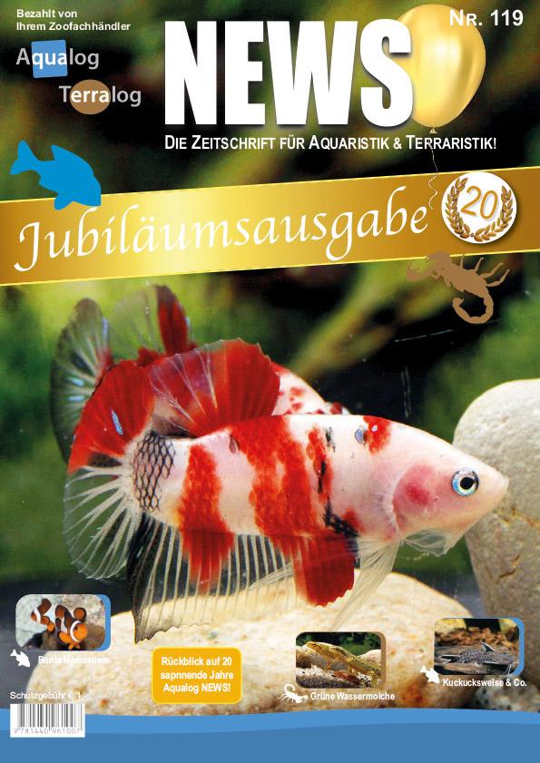 News 119 Cover de