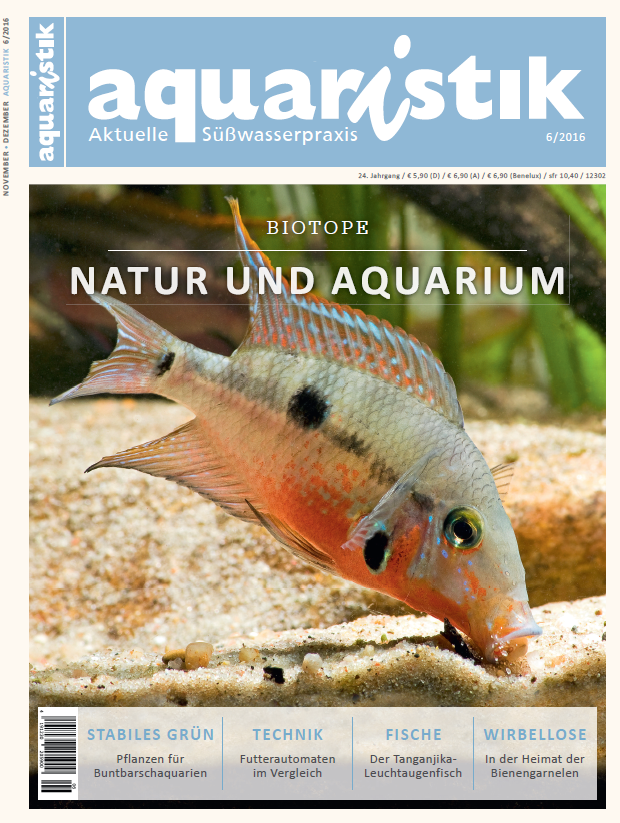 aquaristik-aktuelle-suesswasserpraxis-6-2016