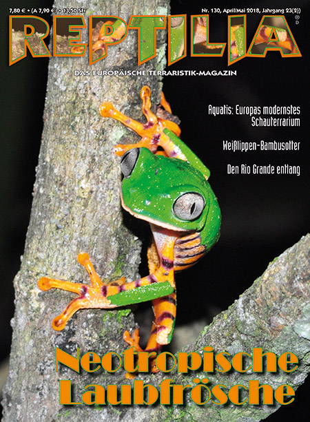 Reptilia 130 Neotropische Laubfrosche April Mai 2018 Aqualog De